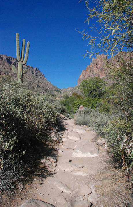 In this photo a small wash leads the way through desert foliage to two mid-sized mountains.